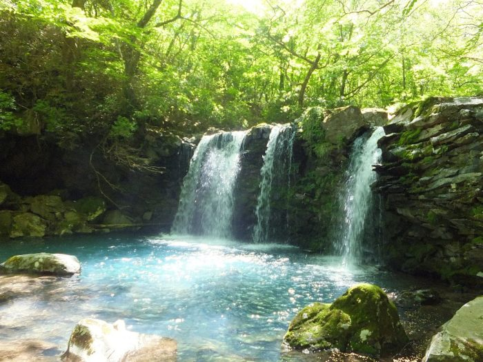 新緑に映える暮雨の滝