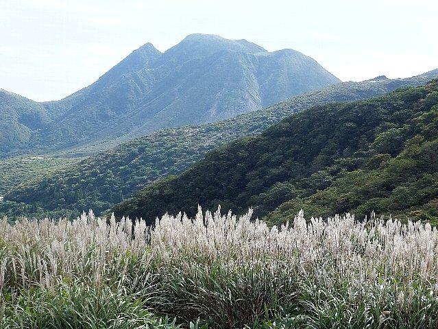 ススキと三俣山