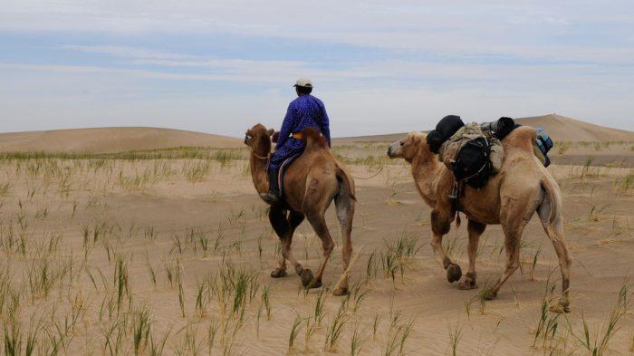 ノマド 遊牧民
