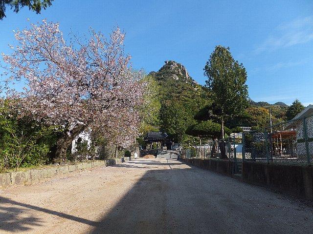 右田ヶ岳 天徳寺への参道