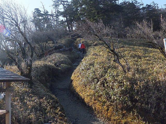 剣山の登山道