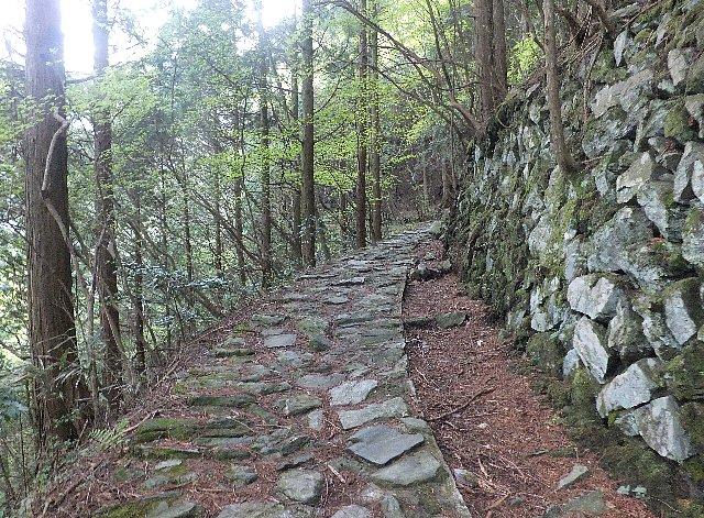 西赤石山 登山道