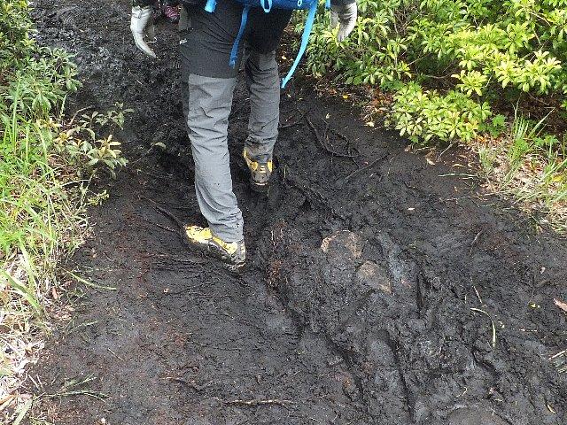 平治岳登山道のぬかるみ