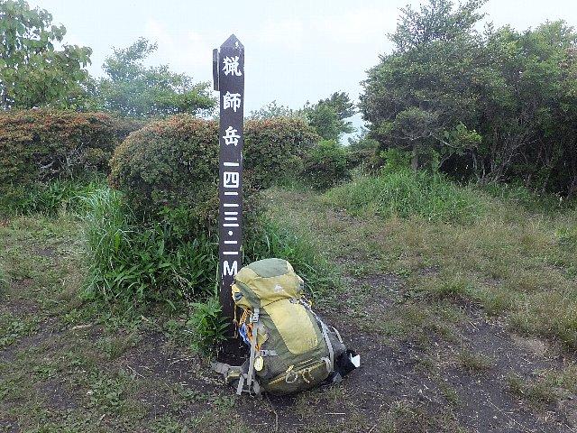 猟師山のオオヤマレンゲ