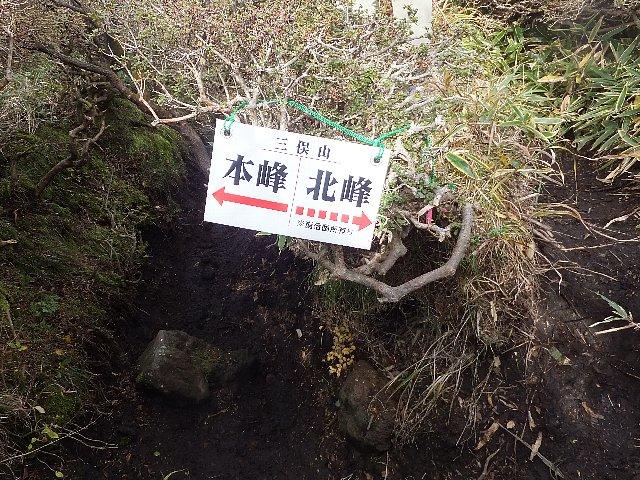 南峰直下の迷いやすい分岐の標識