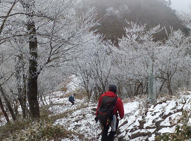 英彦山の霧氷