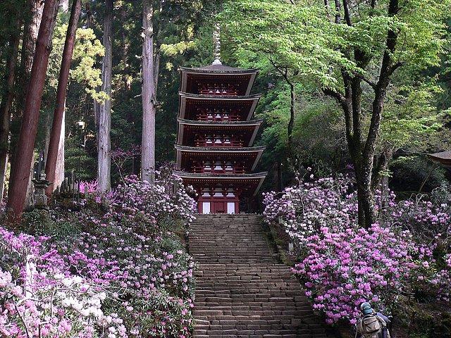 室生寺 五重塔