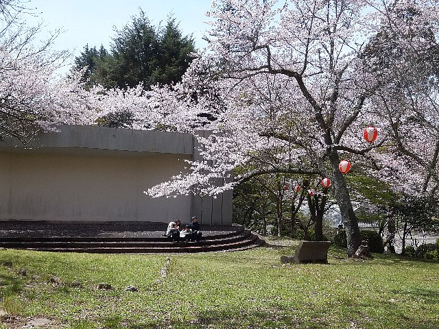 岩石山 桜 添田公園