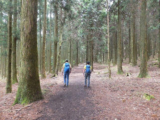 英彦山 九州自然歩道