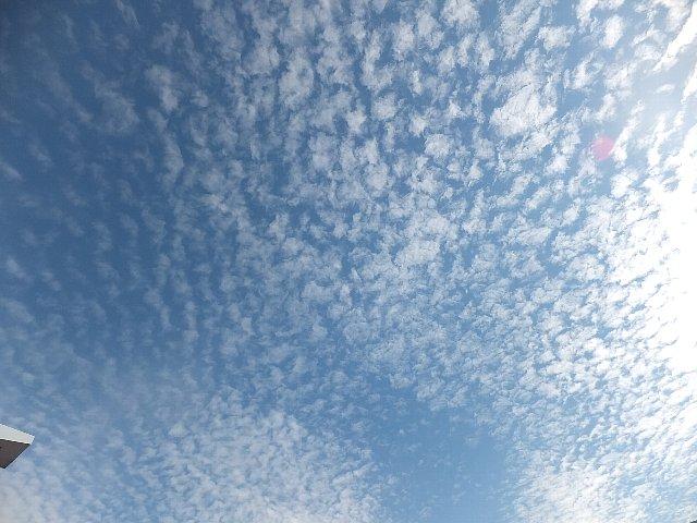 秋空の鱗雲