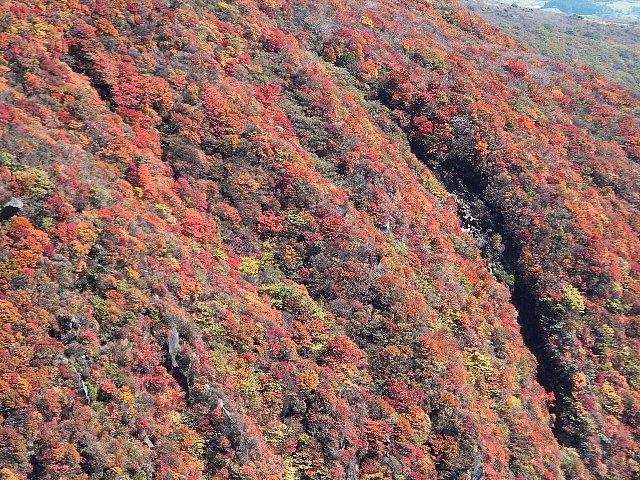 肥前ヶ城の紅葉