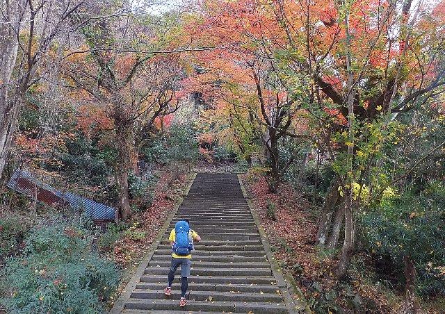 羅漢寺の参道石段