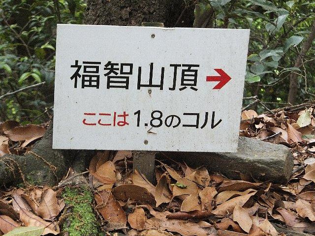 福智山 1.8のコル